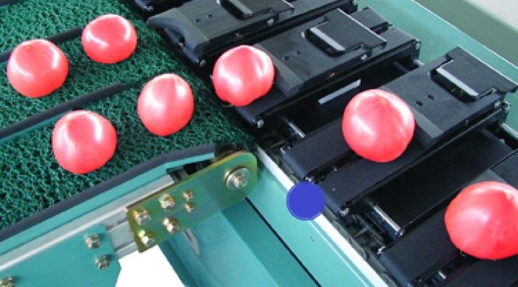 事例⑱:機械用チェーンレール